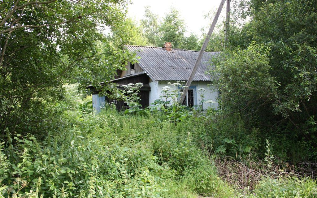 Минюст России, как вернуть бесхозный участок в садоводческое товарищество