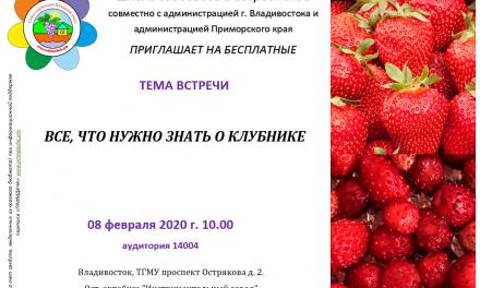 Школа Садоводов: Всё, что нужно знать о клубнике