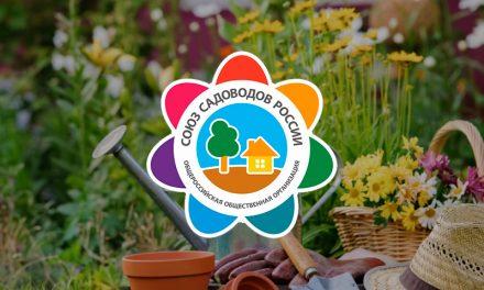 Бесплатные занятия в Школе садоводов Владивостока