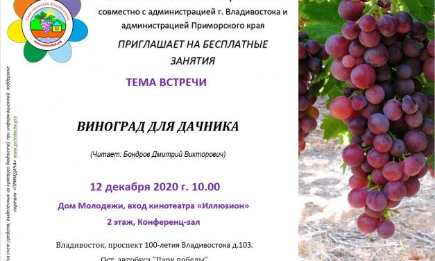 Школа Садоводов: Виноград для дачника
