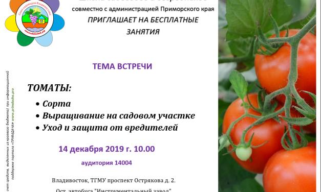 Школа Садоводов: Томаты,выращивание на садовом участке