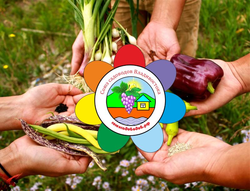 Союз садоводов Владивостока приглашает на курс лекций для руководителей СНТ