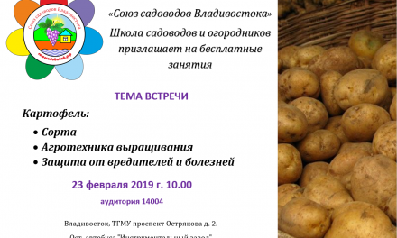 Картофель: Агротехника выращивания (Н.А. Сакара)